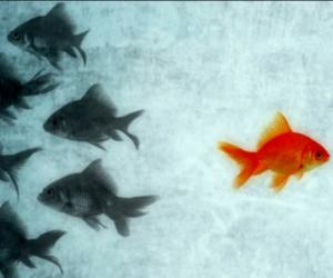 significado y consecuencias de conformismo espiritual